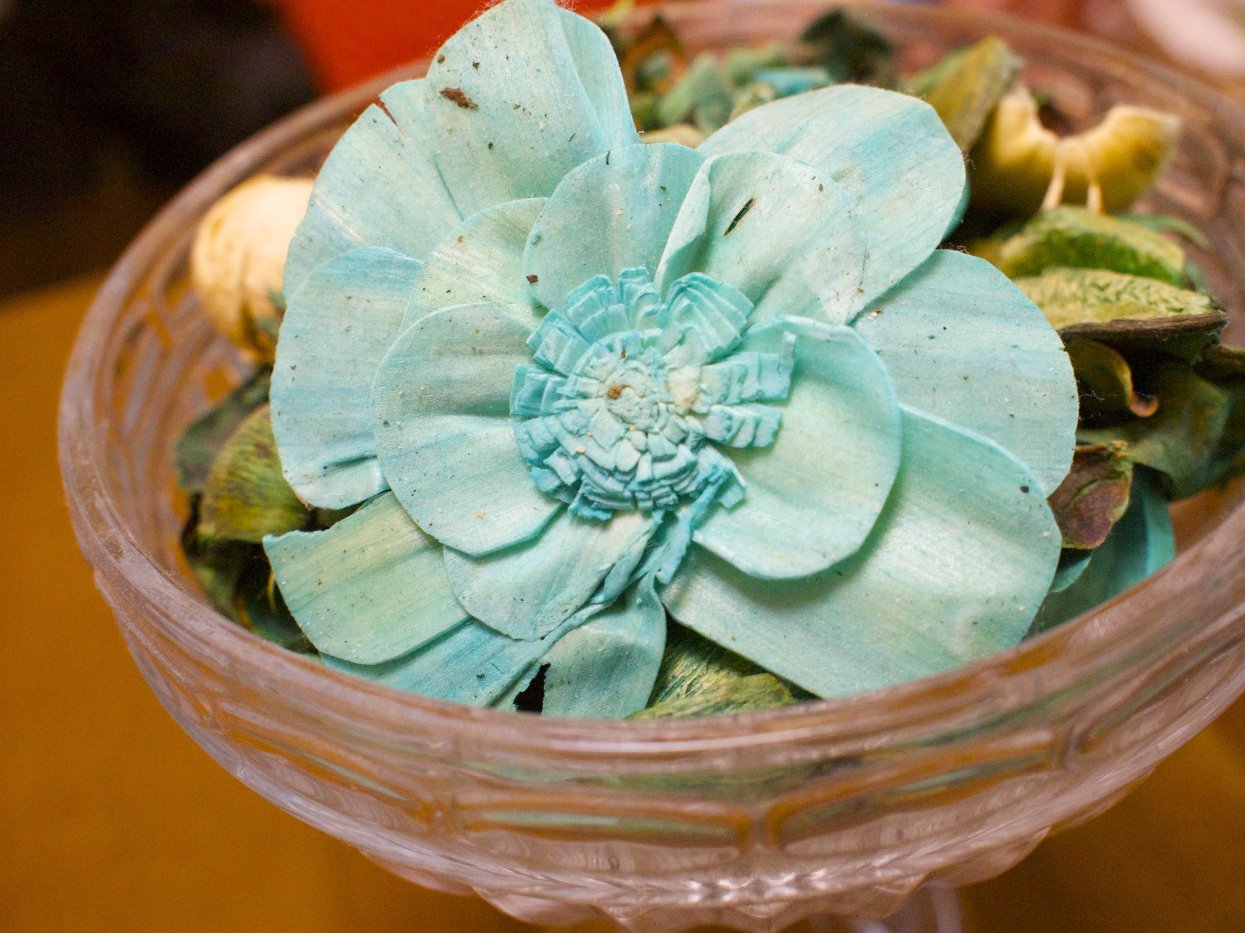 No.1にならなくてもいい、もともと特別なOnly 1。世界に一つだけの花